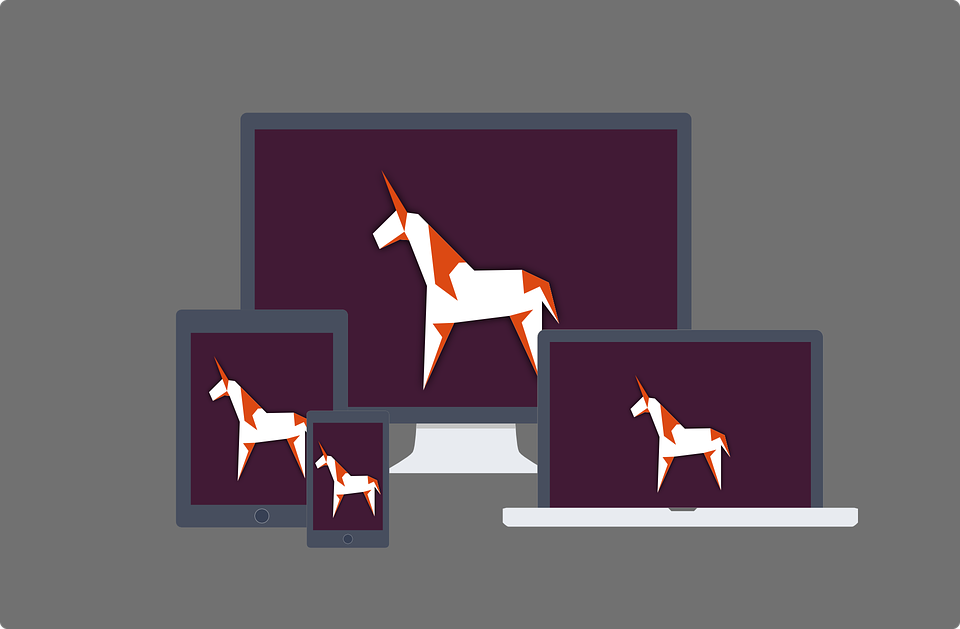 Licornes, ces startups qui valent plus de 1 milliard de dollars