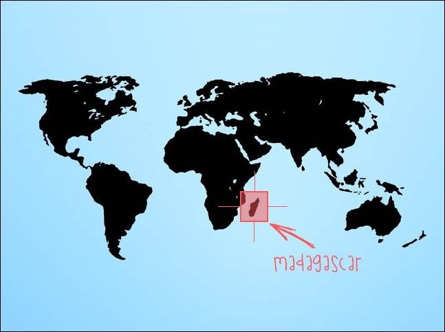 Pourquoi externaliser à Madagascar ?